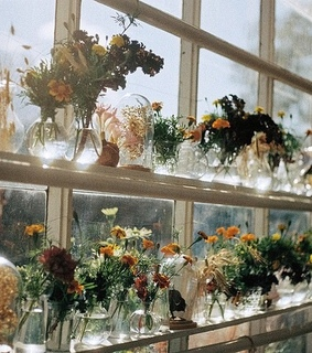 flowers, garden and glass
