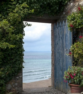 secret garden, nature and vacation