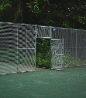 nature, plants and tennis court