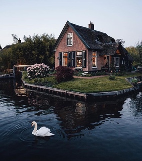 goals, house and beautiful