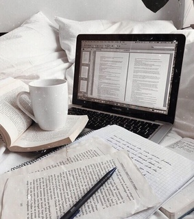 aesthetic, beige and book