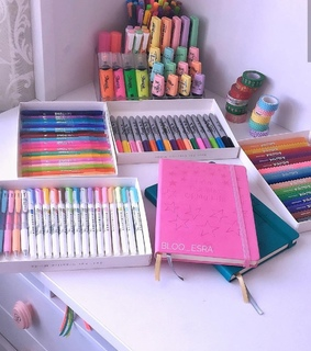 organization, college and back to school