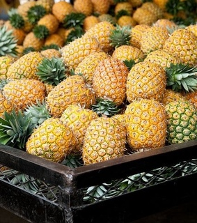 FRUiTS, ananas and drink