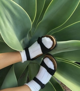 aesthetic, shoes and plant