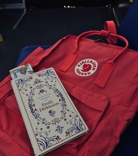pink, poetry and backpack