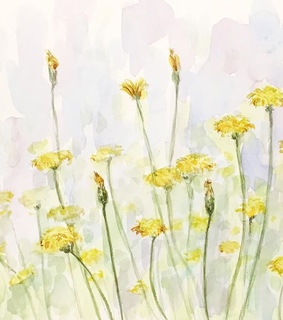 dandelions, painting and ??