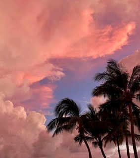 pink clouds, sky and sunset