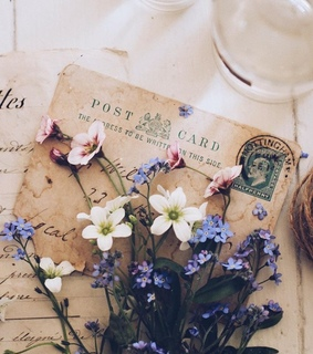 Letter, flowers and old