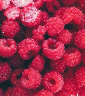 background, berries and berry