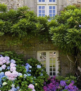 charming, cottage garden and country living
