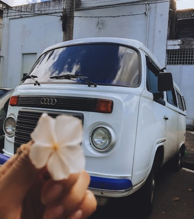 kombi, cars and flowers