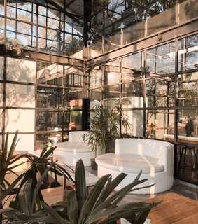 interior, plant and green