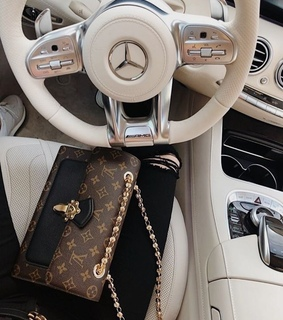 luxury, car and louis