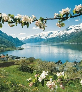 travel, amazing and norway