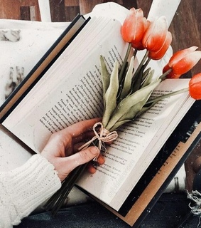 aesthetic, books and flowers