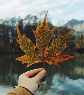 autumn, beautiful and chill