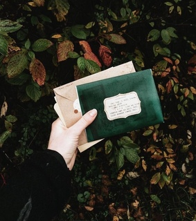 Letter, aesthetic and green