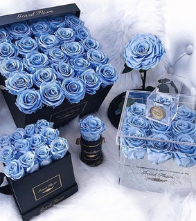 blue, flower and gift