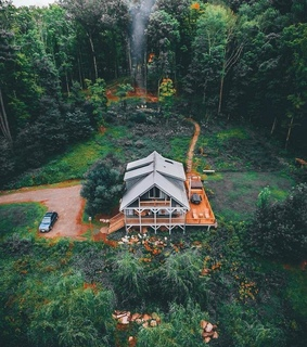 nature, trees and vacation