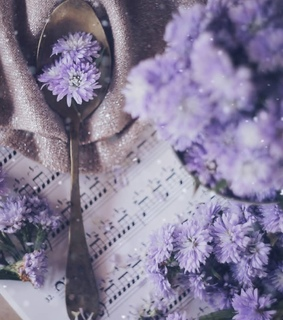 aesthetic, music and blossom