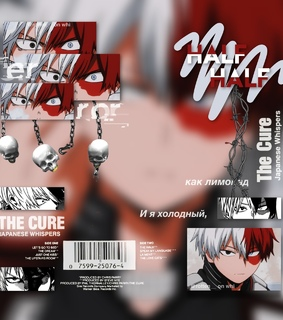 shoto todoroki, complex and aesthetic