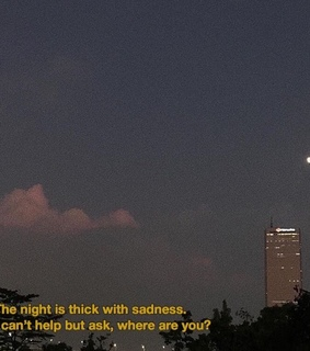 quote, text and night