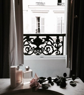 aesthetic, flowers and paris
