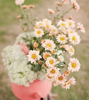 aesthetic, bouquet and daisies