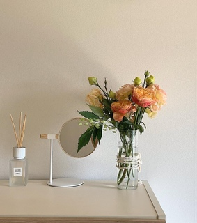 bloom, feed and home