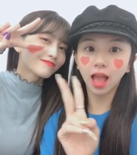 chaeyoung, son and lq