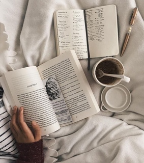 bed, books and natural