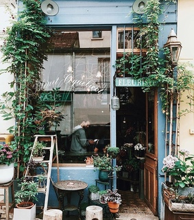 paris, plants and decor