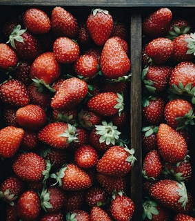 FRUiTS, berries and eat