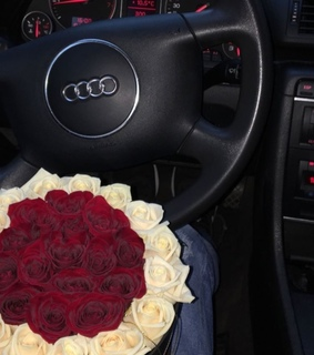 cars, audi and rose