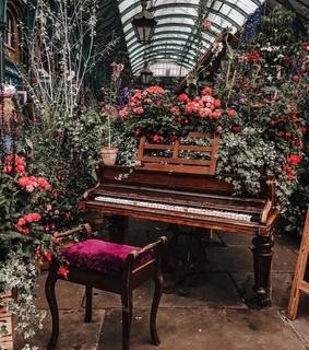 florals, flowers and london
