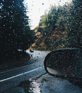 cars, forest and rain