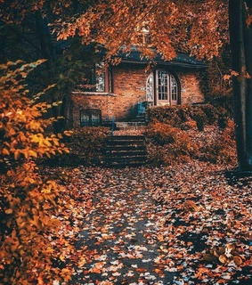 Halloween, aesthetic and autumn