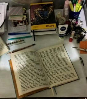 diary, journaling and sunlight