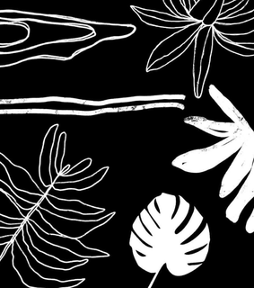plant, overlay and edition