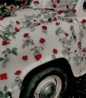 aesthetic, car and flowers