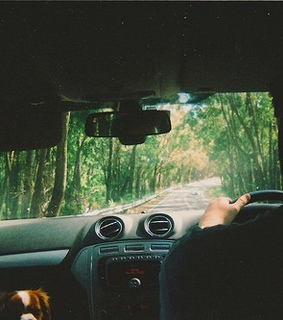 Road Trip, adventure and cars