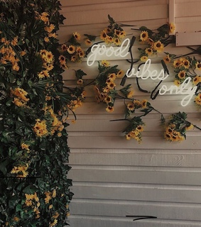 cute, sunflowers and wallpaper