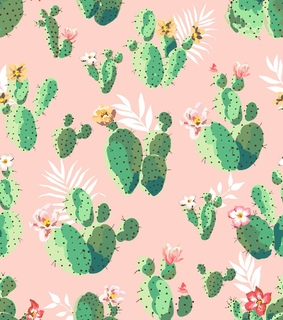 android, background and cactus