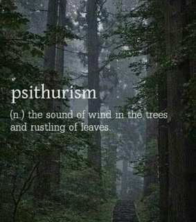 forest, psithurism and solitude