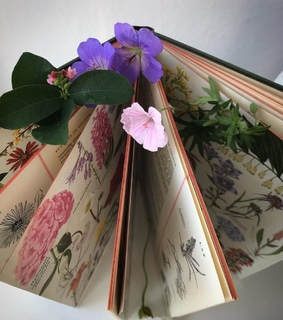 vintage, book and flowers