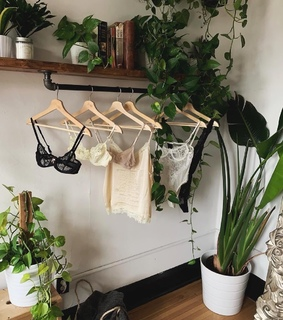 aesthetic, decoration and green