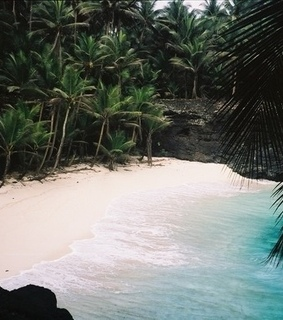 travel, tropical and sea