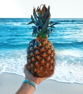 beach, summer and pineapple