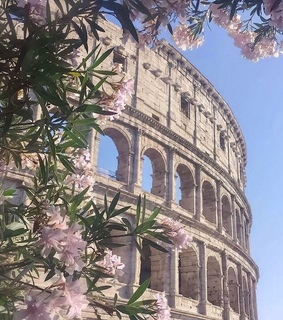 italy, Coliseum and rome