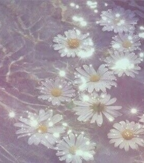 petals, outside and glitter